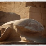 The scarab statue
