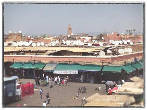 A rooftop sea of satellite dishes in Marrakech