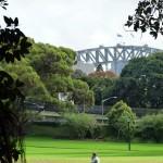 A Glimpse of Sydney Harbour Bridge