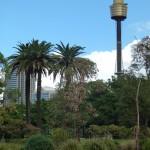 Parklands around Sydney, NSW