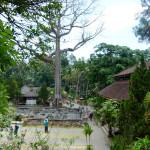 Goa Gajah Complex