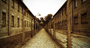fences at Auschwitz