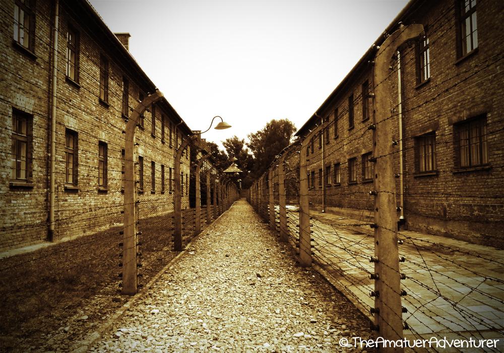 fences at Auschwitz