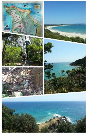Cape Byron Walking Track